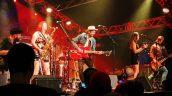 Harvest Jazz & Blues Festival 2016 (photo credit: R. Clements)
